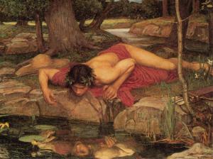 narcissus[1]